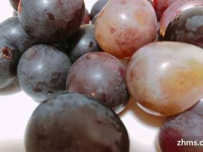 消脂肪的水果 高脂肪的水果有哪些